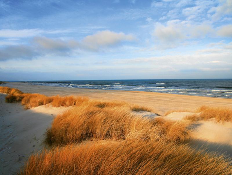 Najczystsze polskie plaże - Błękitne Glagi 2019