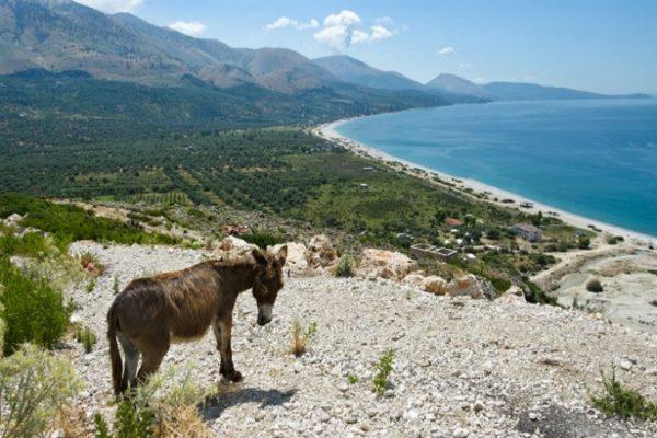 TOP 10 na wakacje: najciekawsze atrakcje Albanii