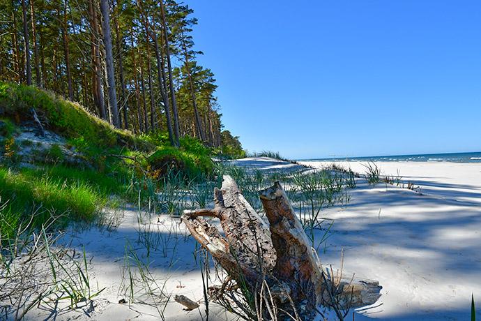 Ranking polskich plaż 2018 - Dębki