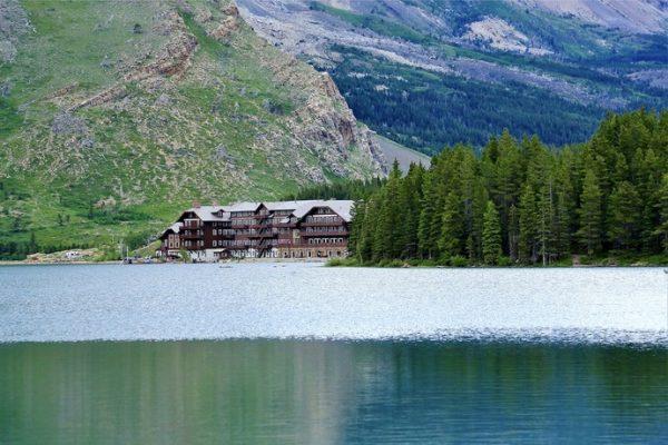 Hotele w środku lasu