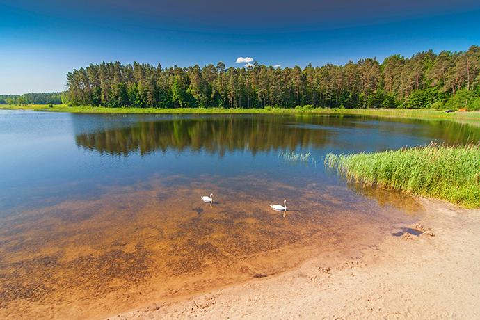 Weekend poza miastem - Lubelskie/Roztocze