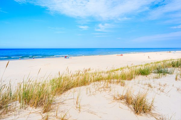Dzikie plaże nad Bałtykiem
