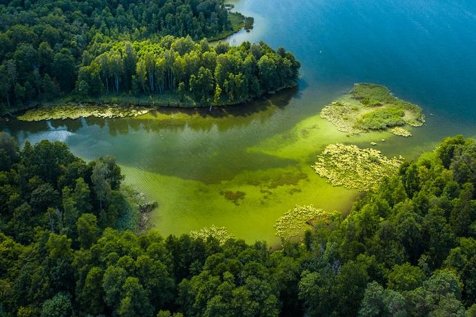 Poznaj Polske z Travelist: Mazury - Krutynia